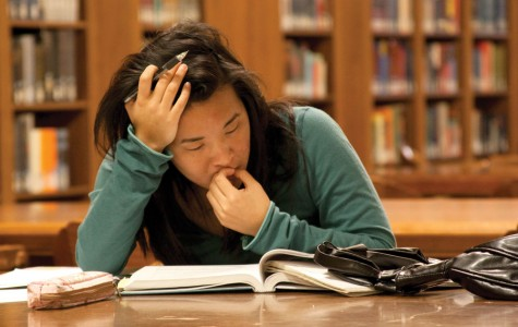 Stress and Its Impact on the Average Student
