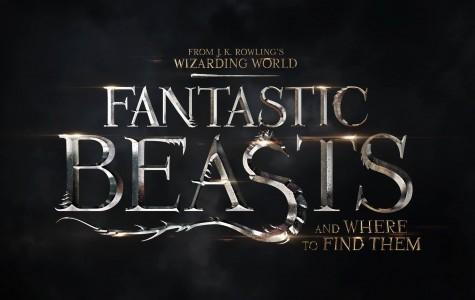 Muggles Welcome Fantastic Beasts