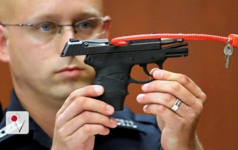 George Zimmerman Auctioning Weapon Used to Murder Trayvon Martin