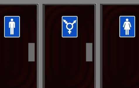 Should Transgender People Use Their Gender-Identified Bathrooms?