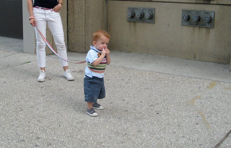 Toddler Leashes: Moral or Humiliating?