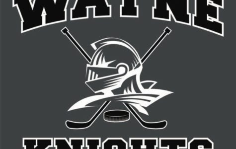 Wayne Knights Senior Preview
