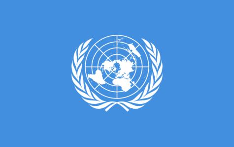 Model UN Club Returns to WHHS