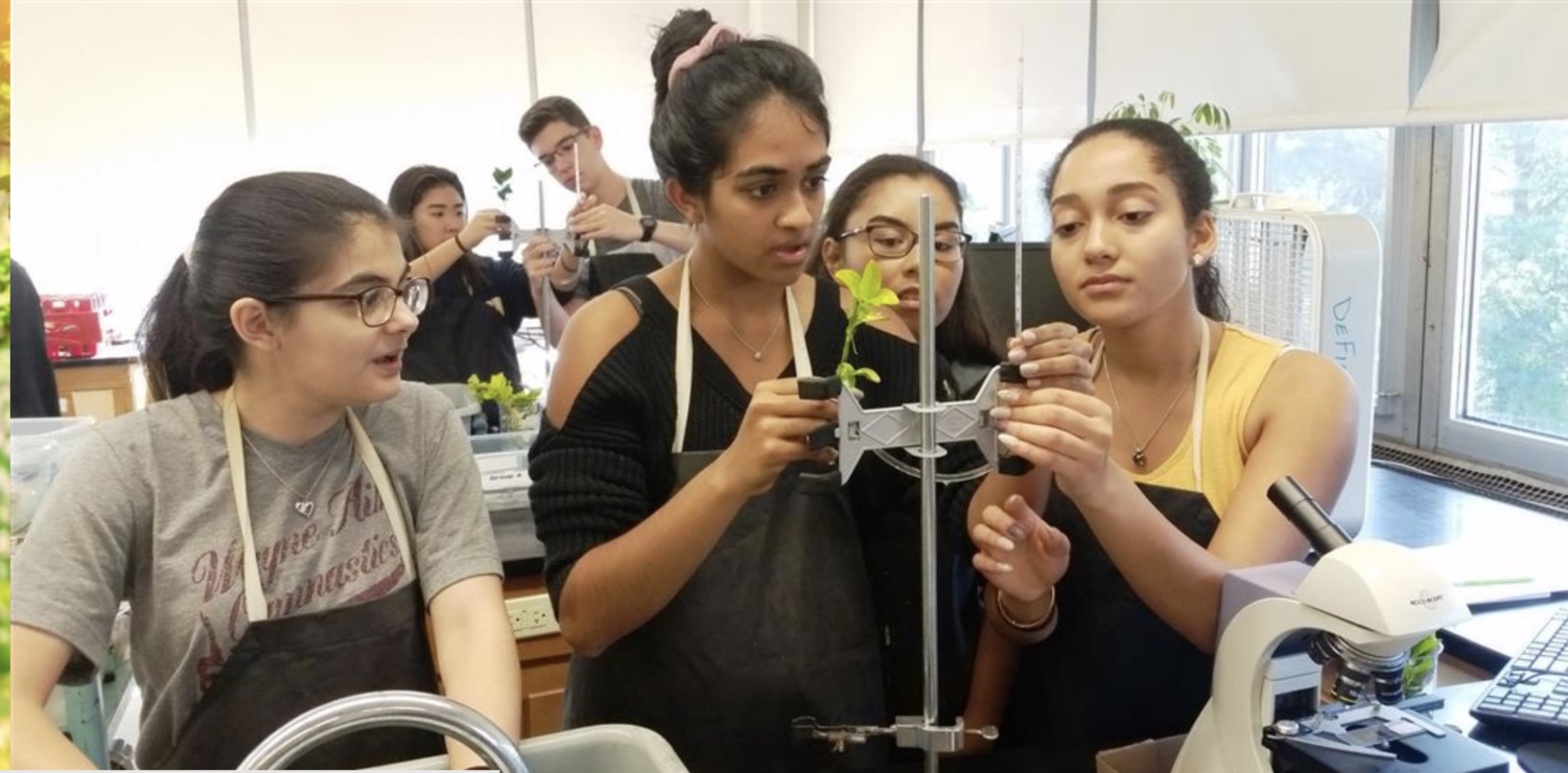 Students in Dr. Defina's AP Biology class participate in lab. (Photo taken from https://www.wayneschools.com/Page/3752)