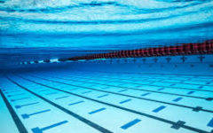 The Boys Swim Team Beats Wayne Valley for the First Time in 9 Years and Makes States