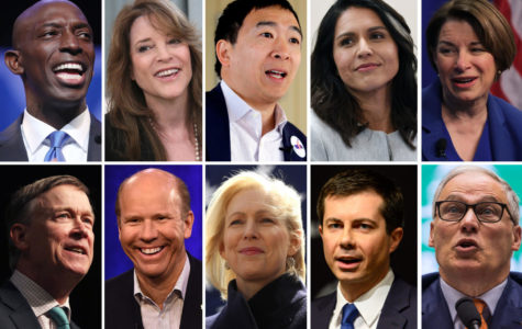 More Than 20 Hopefuls Vie For Democratic Presidential Nomination