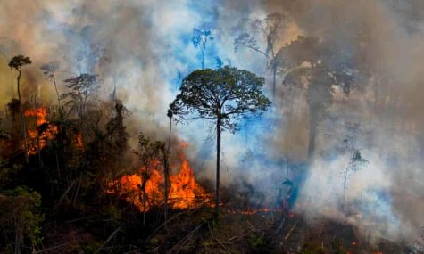 Our Planet is Dying : A Climate Change Update as of April 2021