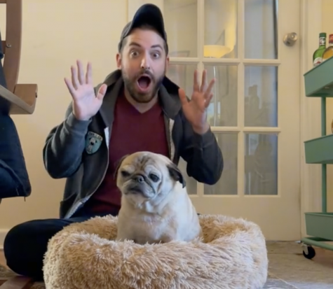 Noodle the pug is standing in his bed with Jonathan Graziano sitting behind suprised