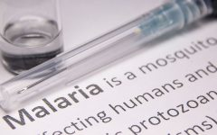 Navigation to Story: New Malaria Vaccine Presents a Level of Efficacy
